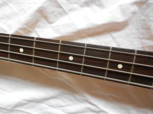 DSCN6411